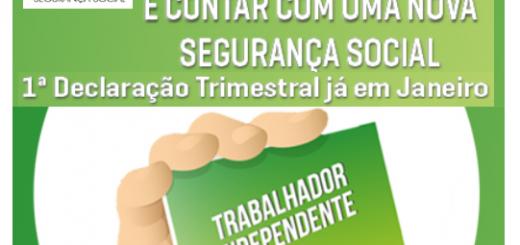 declaracao-trimestral-multigestao